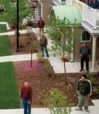 people outside houses